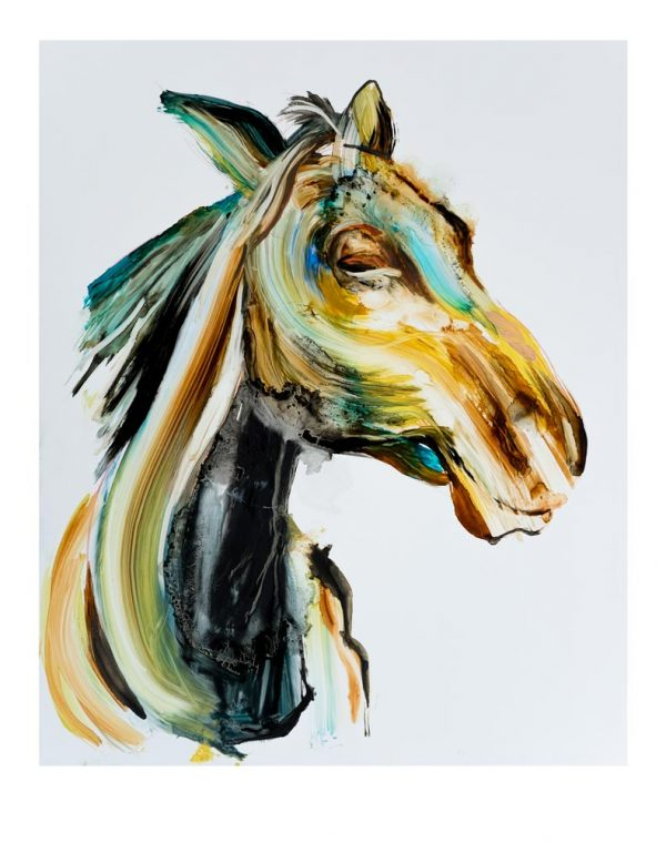 horse art print animals